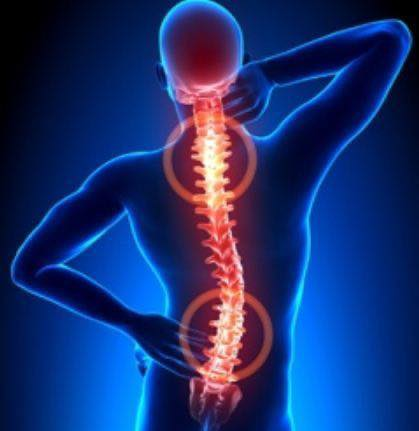 Spine Care – Terapia Kręgosłupa
